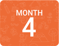 online learning month wise